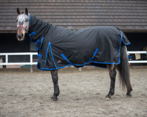 Heavyweight Turnout Horse Rug 350g