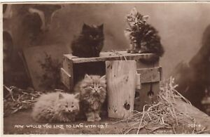 Postcard-CATS-HOW-WOULD-YOU-LIKE-TO-LIVE-WITH-US-Ref-A10