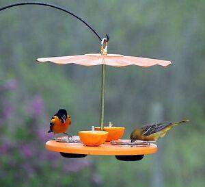 Kettle-Moraine-Recycled-Orange-Oriole-Fruit-Jelly-Mealworm-Bird-Feeder-w-Roof