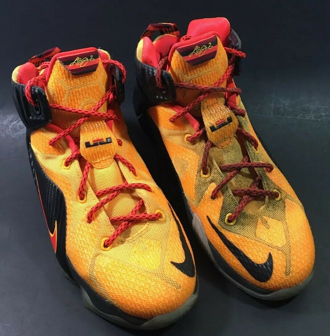 lebron shoes youth size 5