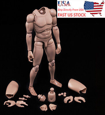 Neck USA seller MX02-A 1//6 Strong Doll Male Figure Body Model Toy Fit For Head