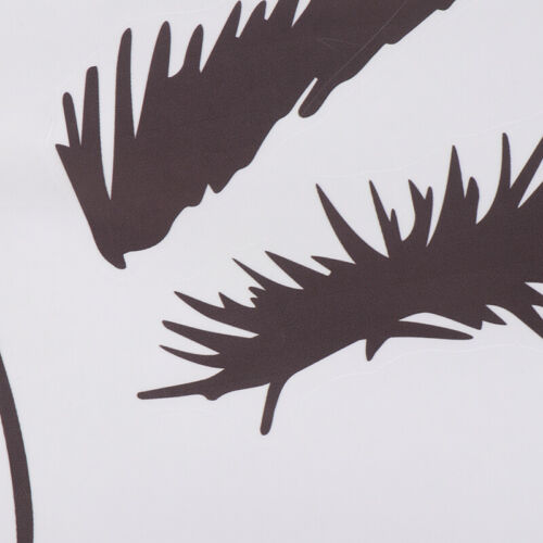 Eye Lashes Extensions Beauty Salon Wall Decor Eyebrows Make Up Wall Sticker KY