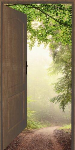 Wandbilder selbstklebend Smileus Landschaften Wald Fotografie Grün A8KE