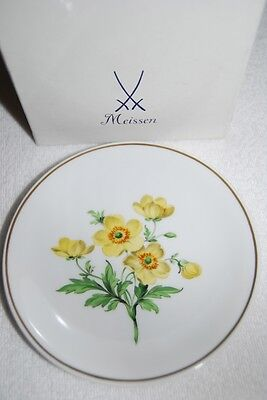 Original Meissen Wandteller Blumenmalerei Blume 5
