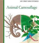 Animal Camouflage by Rene Mettler (Hardback, 2014)