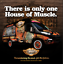 RETRO-HOUSE-OF-MUSCLE-ONE-TWO-THANK-YOU-FORD-FALCON-HUGE-FABRIC-BANNER-3m-x-1m thumbnail 2