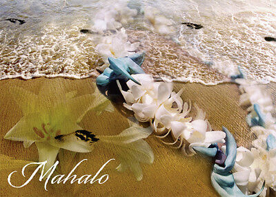 blank inside Mahalo in the Sand Note Cards