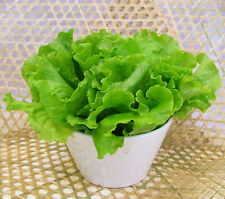 1 Pack 400 Lettuce Seeds Romaine Lettuce Organic Vegetables S001