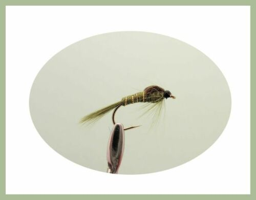 Mixed Size 10//12 12 Pack Olive /& Black Nymph Fly Fishing Nymph Fishing Flies