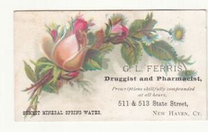 G L Ferris Druggist State St New Haven CT Summit Mineral Spring Water c1880s