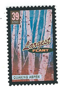 Scott-4072-39-Cent-Wonders-of-America-Largest-Plant-3-Stamps