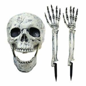 Halloween-squelette-humain-maison-hantee-accessoires-crane-et-mains-bras