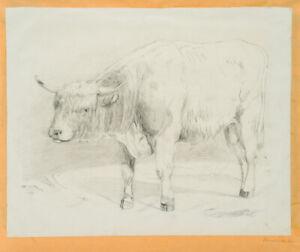 KRUKENBERG-Hermann-1863-1935-Bleistiftzeichnung-eines-Bullen-um-1900