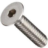 Stainless Steel Flat Head Socket Cap Screw 10-32 X 1: 100ea