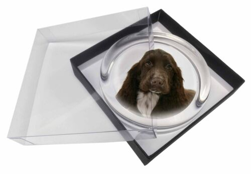 Chocolate Cocker Spaniel Dog Glass Paper in Gift Box Christmas P, ADSC3PW