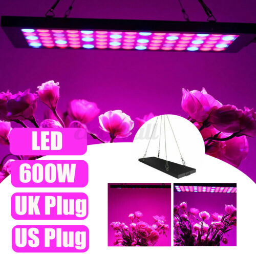 600W LED Grow Light Full Spectrum Indoor Plant Hydroponic Veg Flower Lamp