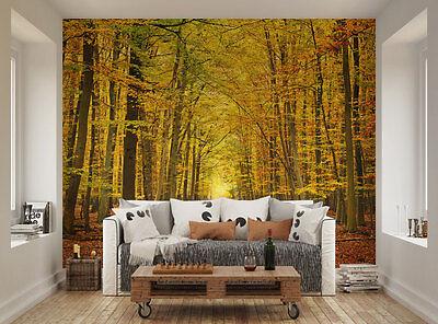 ohpopsi Path Through A Forest In Autumn XL Wall Mural