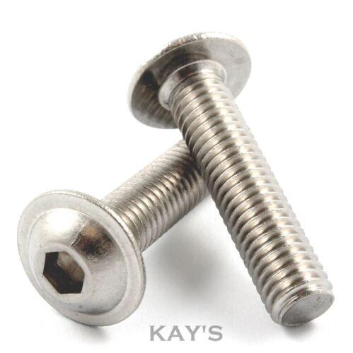 M6 Stainless Steel Bolts; Flanged Button Head Allen Screws