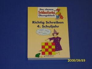 Schlaufuchs Richtig Schreiben 4 Klasse Deutsch Ebay