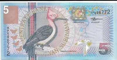 5 Gulden Beautiful Woodpecker and BAT from 2000 P - 146 Suriname