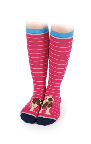 Breathable Cotton Shires Everyday Adults Riding Socks Coloured Toes