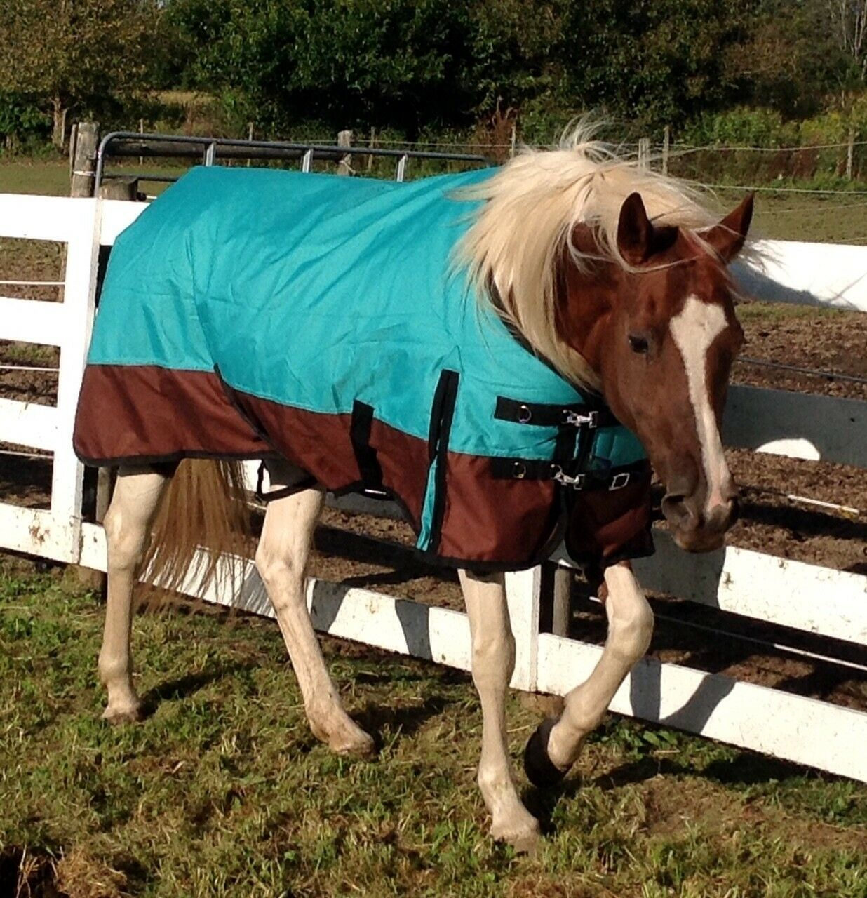 New 1200D Heavy Winter Horse Turnout Blanket   Royal Grey 60