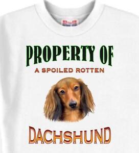 95e7c752f1e6 Dog T Shirt - Property of a Spoiled Rotten DACHSHUND Men Women Adopt Animal    76