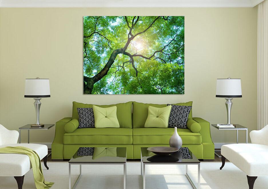3D Bäume die Sonne 523 Fototapeten Wandbild BildTapete AJSTORE DE Lemon