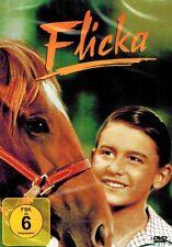 DVD NEU/OVP - Flicka (1943) - Roddy McDowall & Preston Foster