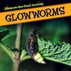 Glowworms by Kristen Rajczak (Paperback / softback, 2015)