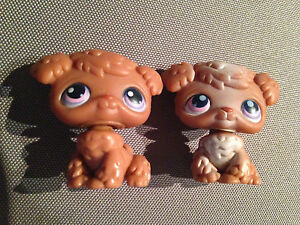 Littlest Pet Shop Brown Poodle Puppy Dogs Retired  Rare 38 and 39 LPS 2004 4cm - <span itemprop=availableAtOrFrom>Darlington, United Kingdom</span> - Returns accepted Most purchases from business sellers are protected by the Consumer Contract Regulations 2013 which give you the right to cancel the purchase within 14 days after the d - Darlington, United Kingdom