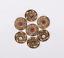 10X-Western-3D-Flower-Turquoise-Conchos-For-Leather-Craft-Bag-Belt-Purse-Decor miniature 26