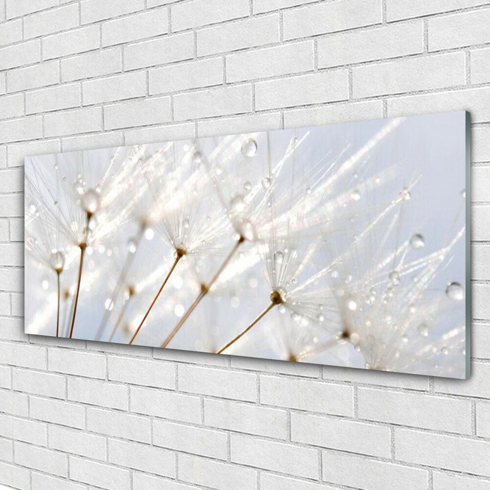 Print on Glass Wall art 125x50 Picture Image Dandelion Floral