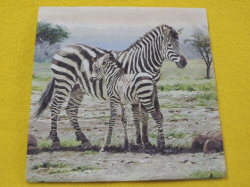 5 Servietten Zebra Serviettentechnik Motivservietten Tiere Afrika Fohlen 1//4