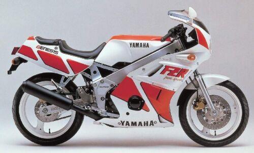 Yamaha FZR400R 1988-1995 large headed stainless steel screen fairing bolts kit