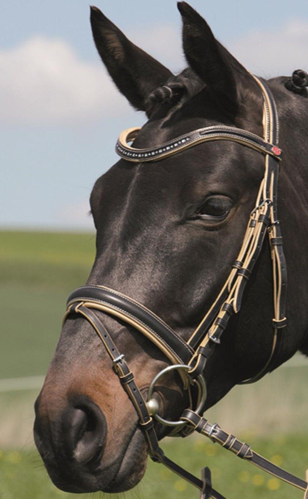 Kieffer Kandarenzaum   ULLA II  , schwed. Reithalfter, black creme, Warmbluet