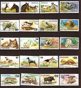 FILIPINAS-Animales-salvaje-y-nacionales-279T1
