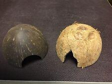 2 Kokosnuss Halbschalen - Versteck / Höhle für Garnelen Welse Krebse Fische
