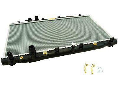 Auto Trans Shift Lever Knob-Carded Dorman 76937
