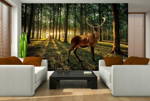 Photo Wallpaper Mural Non-woven 0104545D13 Deer in Sunny Forest