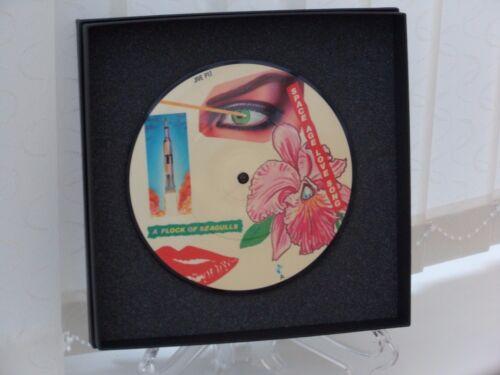 "F  VINYL RECORD 7/"" PICTURE DISCS Gift Boxed Pop Rock Punk Indie Presentation E"
