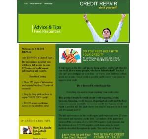 Credit-Loan-Niche-Turnkey-Website-Business-For-Sale