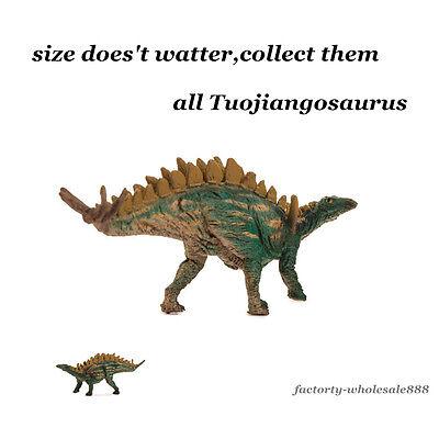 Hot PNSO Rare Nyctosaurus Kinder Dinosaur Figure Kids Education Museum Model 1pc