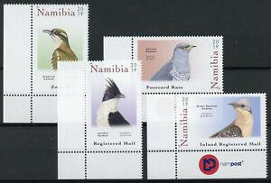 Namibia-2019-Gomma-integra-non-linguellato-Cuckoos-africana-giacobina-diderick-a-cucu-4v-Set-birds