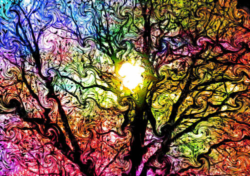 Canvas Colorful Abstract Psychedelic Trippy Tre Art Print POSTER