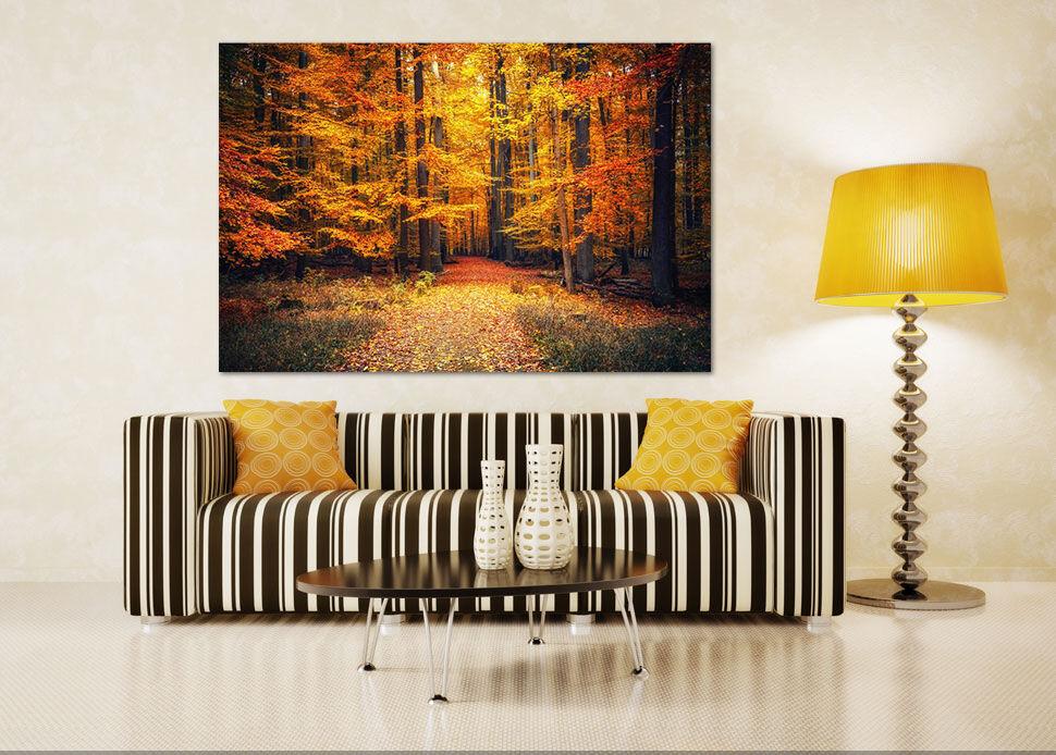 3D Herbst Wald 622 Fototapeten Wandbild BildTapete AJSTORE DE Lemon