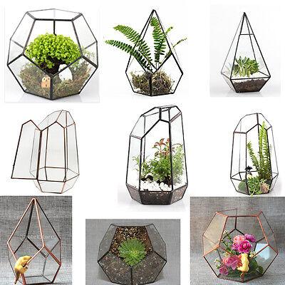 Geometric Fern Moss Succulent Glass Terrarium Plant Pot Box for Christmas Decor