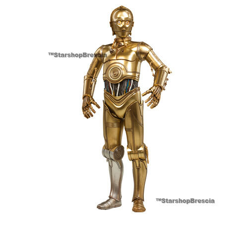 STAR WARS - C-3PO 1/6 Action Figure 12