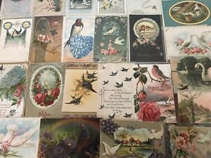 Nice-Lot-of-25-Antique-Greetings-Postcards-with-BIRDS-Bird-in-sleeves-a482