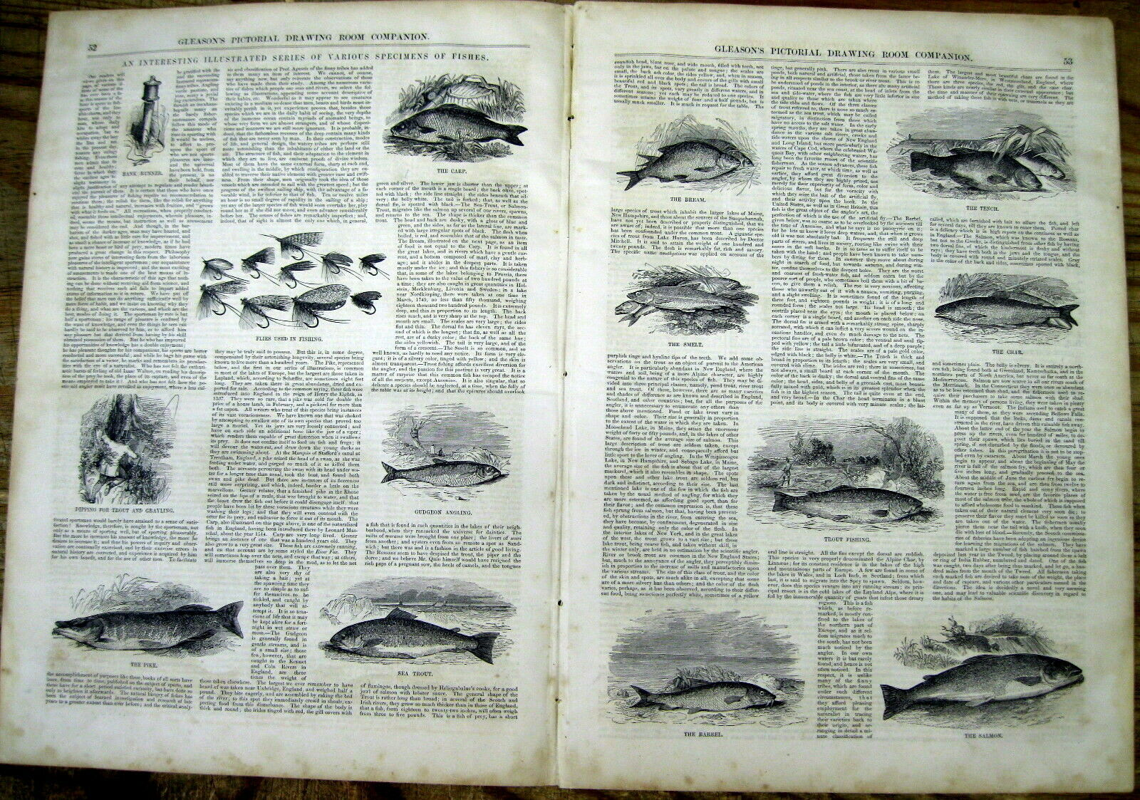 1852 newspaper w highly illustrated report SPORT FISHING for trout PIKE Salmon +